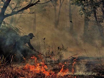 hašení požáru v Sungai Wainu