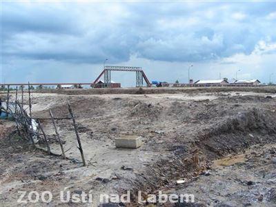 Přeměna mangrovů v továrnu na zpracování palmového oleje