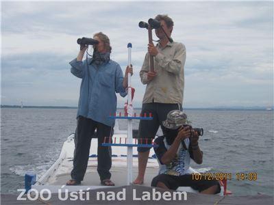 Danielle, Standa a Danang při hledání delfínů
