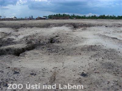 Bývalý mangrov na řece Berenga, v místě, kde Wilmar staví své překladiště palmového oleje