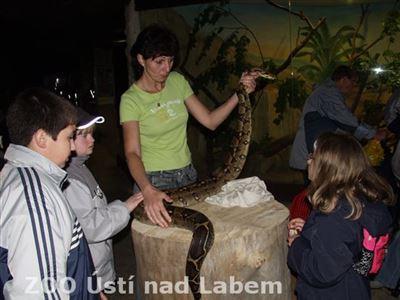 Některé děti si na živého hada sáhly poprvé v životě
